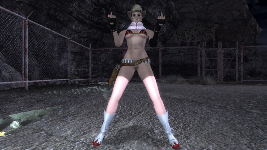 stalker new night vegas fallout How to get championship ashe